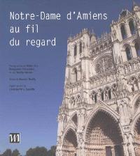 Notre-Dame d'Amiens au fil du regard = A look along Notre-Dame d'Amiens