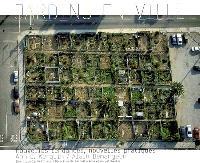 Jardins en ville : nouvelles tendances, nouvelles pratiques