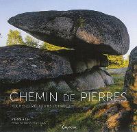 Chemin de pierres : roches et mégalithes de France