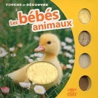 Touche et découvre les bébés animaux