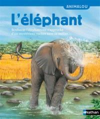 L'éléphant : Boubacar l'éléphanteau s'approche d'un mystérieux rocher sans se méfier...