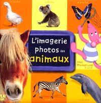L'imagerie photos des animaux : avec Moustilou la souris