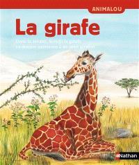 La girafe : dans la savane, Koudji la girafe va donner naissance à un petit girafon...