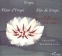Yrupe = Fleur d'Yrupé = Flor de Yrupe : conte du Paraguay