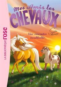 Mes amis les chevaux. Volume 6, Une rencontre inoubliable