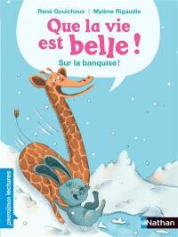 Que la vie est belle !. Volume 2, Sur la banquise !