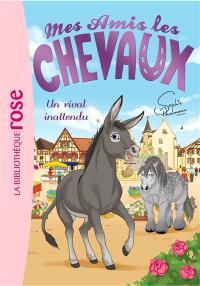 Mes amis les chevaux. Volume 4, Un rival inattendu