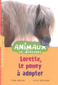 Animaux en détresse, Lorette, le poney à adopter