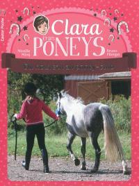 Clara et les poneys. Volume 6, Du nouveau au poney-club