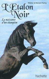 L'étalon noir, La naissance d'un champion
