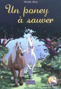 Un poney à sauver