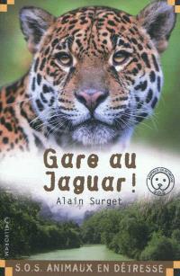 Gare au jaguar !
