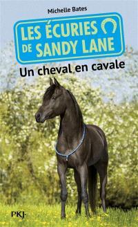Les écuries de Sandy Lane. Volume 7, Un cheval en cavale