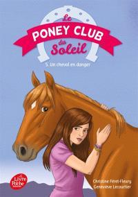 Le poney club du soleil. Volume 5, Un cheval en danger