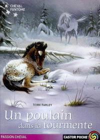 Cheval fantôme. Volume 5, Un poulain dans la tourmente