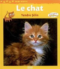 Le chat : tendre félin