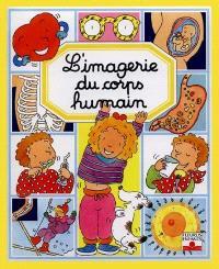 L'imagerie du corps humain