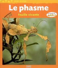 Le phasme : feuille vivante