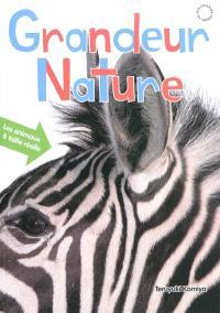Grandeur nature : les animaux à taille réelle