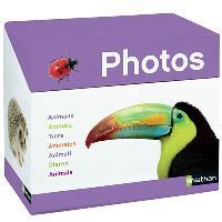Imagier photos, les animaux