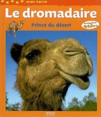 Le dromadaire : prince du désert