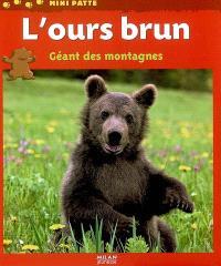 L'ours brun, géant des montagnes