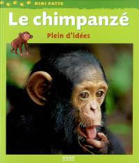 Le chimpanzé : plein d'idées