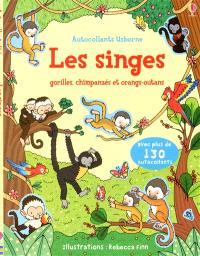 Les singes : gorilles, chimpanzés et orangs-outans