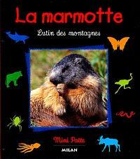 La marmotte : lutin des montagnes
