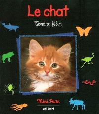 Le chat : tendre félin