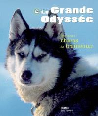La Grande odyssée : profession chiens de traîneaux