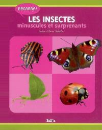 Les insectes minuscules et surprenants