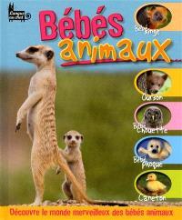 Bébés animaux : découvre le monde merveilleux des bébés animaux