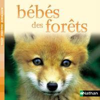 Bébés des forêts