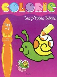 Colorie les p'tites bêtes : escargot