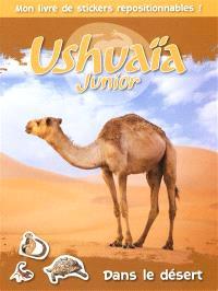 Dans le désert : mon livre de stickers repositionnables !