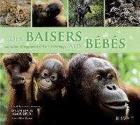 Des baisers aux bébés : avec le lion, l'orang-outang, le cerf et le grèbe huppé