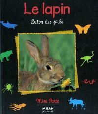 Le lapin : lutin des prés