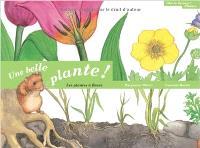 Une belle plante ! : les plantes à fleurs