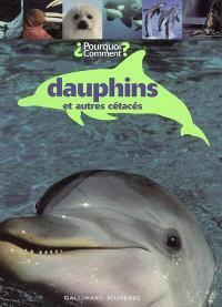 Dauphins : et autres cétacés