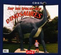 Sur les traces des dinosaures. Dinosaures