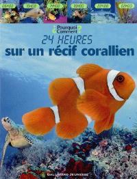 24 heures sur un récif corallien