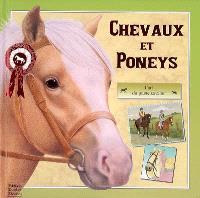 Chevaux et poneys : l'art du jeune cavalier