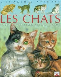 Les chats : pour les faire connaître aux enfants
