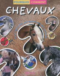 Les chevaux : pour répondre aux questions des enfants