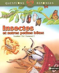 Insectes et autres petites bêtes