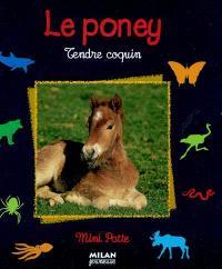 Le poney : tendre coquin