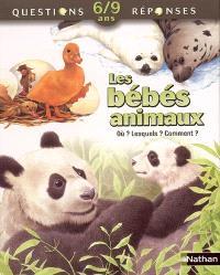 Les bébés animaux : où ? Lesquels ? Comment ?