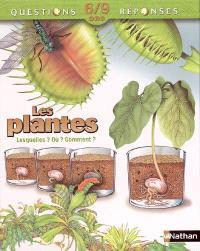 Les plantes : lesquelles ? Où ? Comment ?