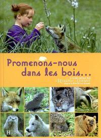 Promenons-nous dans les bois : la vie des animaux dans Le renard et l'enfant